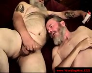 Bearded Straight Amateur Dilfs Sucking - scene 5