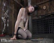 Wild Slaves Waiting For Tortures - scene 9