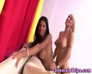 Shemales Slam And Jizz - scene 10
