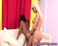 Shemales Slam And Jizz - scene 11