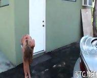 Horny Slut Rides A Cock - scene 7