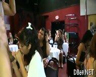 Fulfilling Wild Chicks Sexual Needs - scene 2