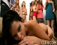 Babe Banged From Behind - scene 12