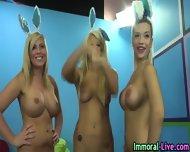 Busty Blonde Pornstars - scene 7