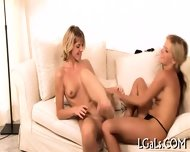 Babes Give Cunnilinguses - scene 11