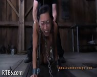 Upside Down Babe Gives Blowjob - scene 11