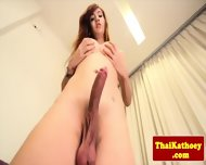 Bigtitted Ladyboy Teases Sensually - scene 10