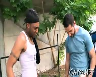 Interracial Gay In Doggie - scene 2