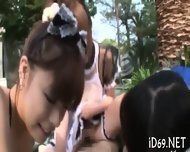 Hot Chicks Wild Pleasuring - scene 12