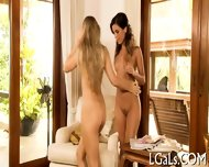 Two Chicks Are Fingering - scene 8