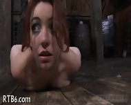Sweet Babe Enters Her Cage - scene 10