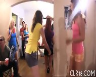 Sizzling Hot Orgy Party - scene 2