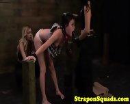 Nippleclamped Lesbian Strapon Sub Face Fucked - scene 9