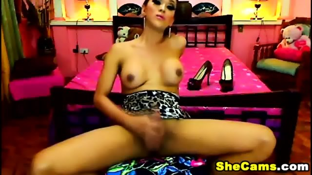 Gorgeous Shemale Live Cam Free