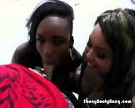 Naomi And Vixen Having Fun Sucking Big Hard Dick