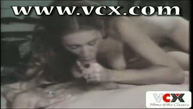 VCX Classic - The Untamed