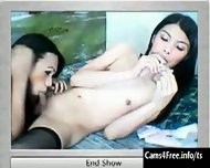 Two hot Asian Shemales Suck Cock on Webcam! - scene 9