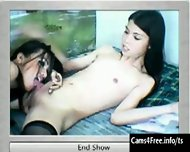 Two hot Asian Shemales Suck Cock on Webcam! - scene 10