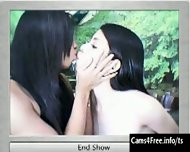 Two hot Asian Shemales Suck Cock on Webcam! - scene 4