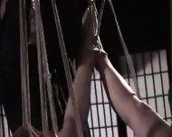 Japanese Rope Bondage - scene 10