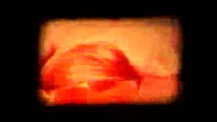 Psychedelic Porn - scene 9