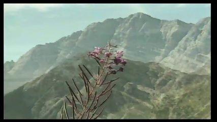 Heidi teil 5 die lustigen spritzbuben der berge 4